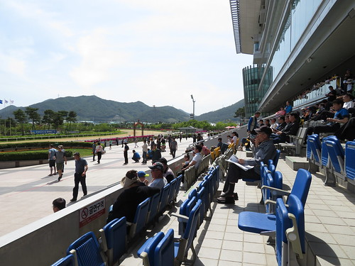 釜山慶南競馬場のスタンド