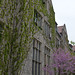 Small photo of University of Chicago