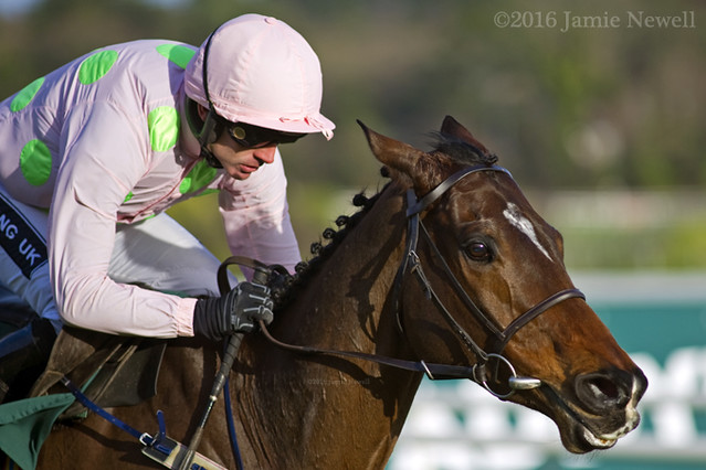 Douvan and Ruby Walsh win the GI Paddy Power Cashcard Steeplechase
