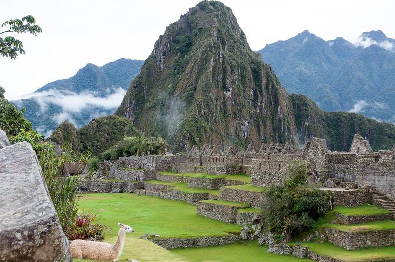 Machu Picchu_075_20170428_DSC_6336.jpg