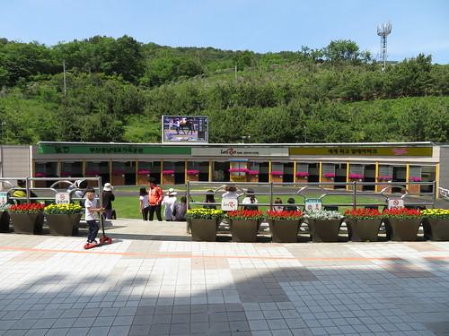 釜山慶南競馬場のパドックに近づく