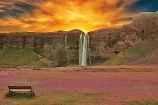 Iceland  ~ Seljalandsfoss Waterfalls ~ Bench to View