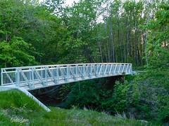 Bridge at Lake Erie Bluffs