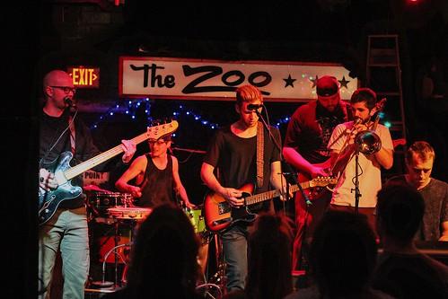 A Ferocious Jungle Cat | the Zoo Bar | 5.11.17