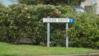 Corbie Drive