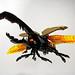 Hercules Beetle by Takamichi Irie