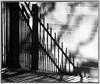 Shadow on a wall