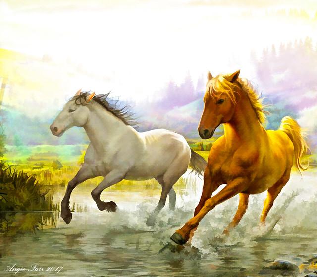 Wild Mustangs .