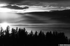 Misty Canadian Sunset