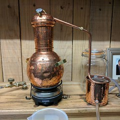 Making gin