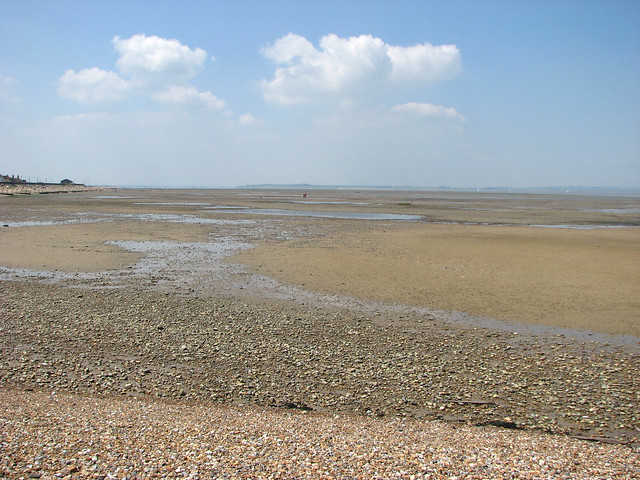 The coast at Seasalter