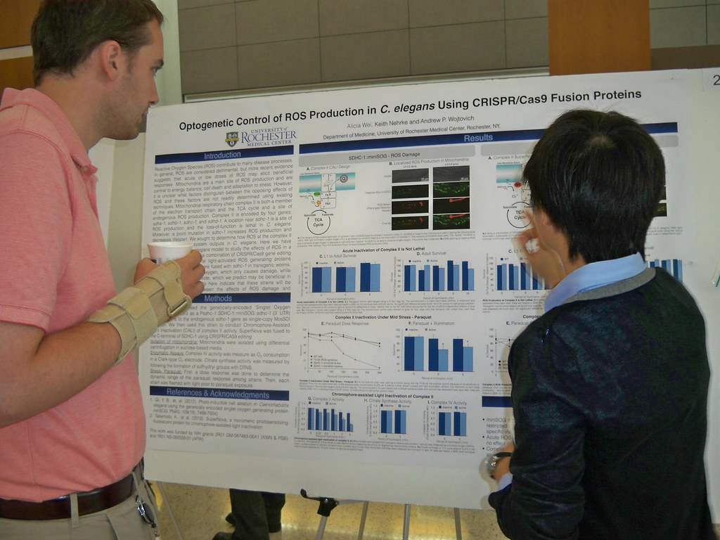 Alicia Wei explains research to guest