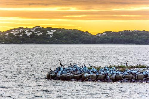 ngc jetty sunset australind