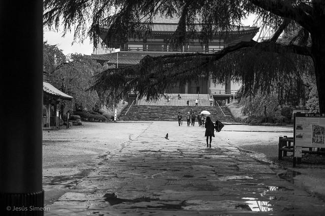 Sound of Rain, Fujifilm X-E1, XF35mmF1.4 R