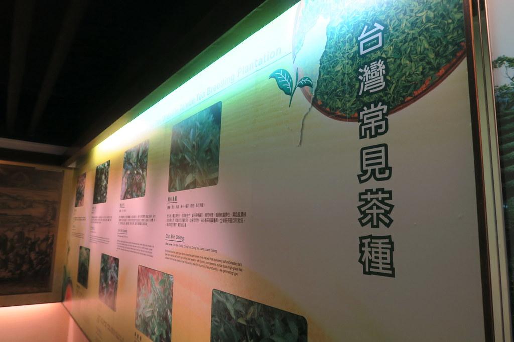 天仁文化館 (12)