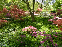 Planting Fields Arboretum - Oyster Bay (51)