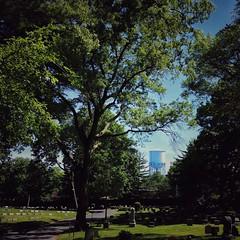 Sunday in Kew Gardens, Queens