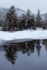 Big Bear Reflections