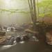 El racó de les fades, Montseny by Daniel Salgado Lemos