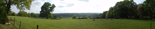 View from East Bergholt