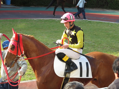 佐賀競馬場の山口以和騎手