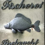 Ausflug Fischerei Oberle 04