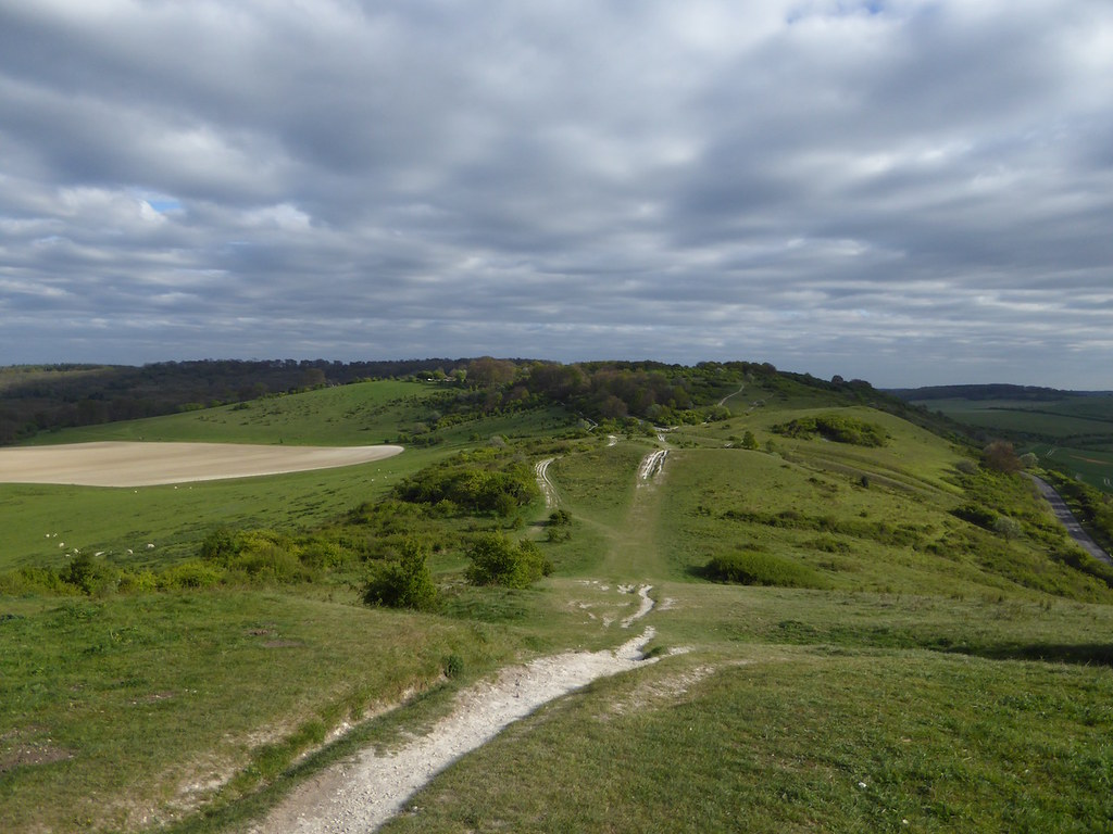 Looking onwards from Ivinghoe Beacon Tring Circular walk