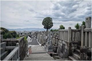 Cimetière (Tokyo)