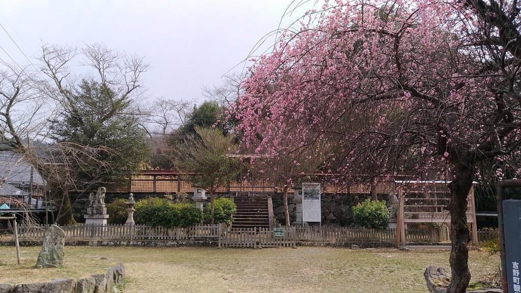 吉野 勝手神社