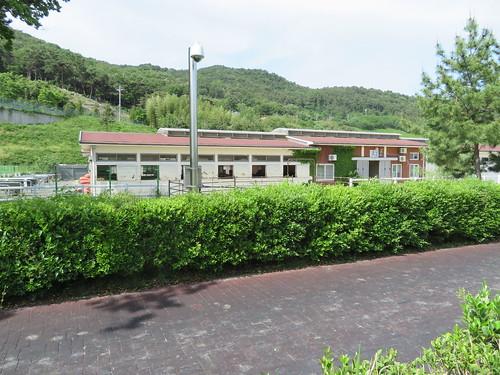 釜山慶南競馬場の馬房