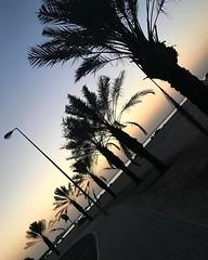An evening jog it's only 34 degrees .. not even august. #gulfdiaries #gulf #instatravel #run #jog#hobble #workitbaby #burnbabyburn #destress #freshair #instagram #instashot #instamood #instarelaxation #chillin #workit #sunset #instablogger #phlogger #ig_