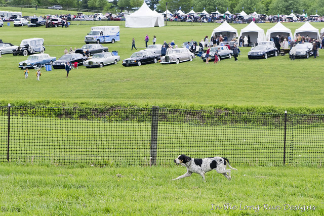Winterthur Point-to-Point 2017