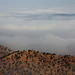 Über den Wolken by perunasose