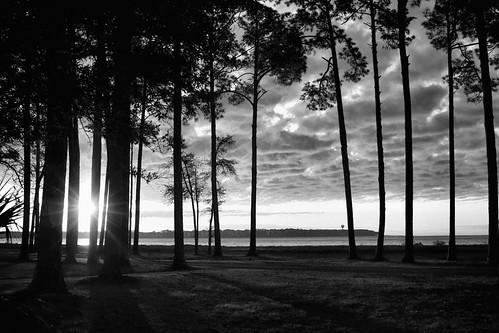 daufuskieisland southcarolina dawn sunrise monochrome blackandwhite bw dorameulman haiku poem seascape landscape depression light canon canon7dmark11 outdoor