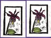 calypso orchid prints