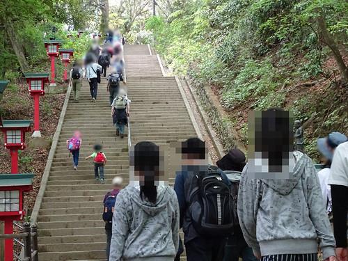高尾山の男坂女坂