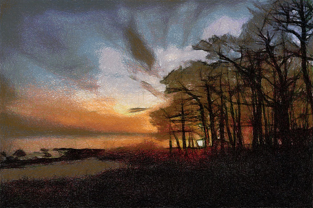 Trees and Sea and Sunset