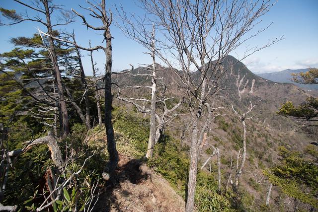 20150510-皇海山-0455.jpg