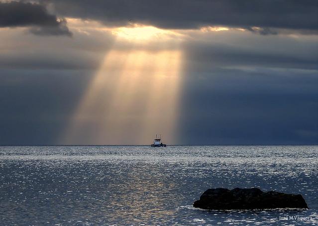 La luz  /The light