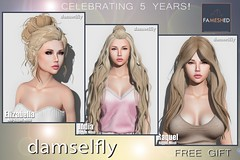 damselfy-Fameshed May 1 - May 28