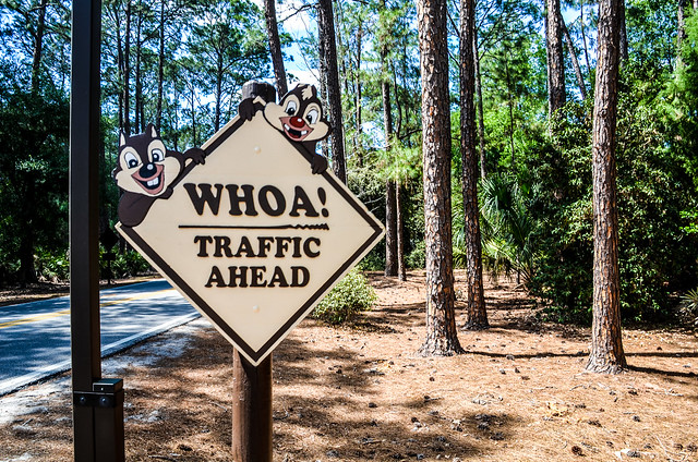 Chip Dale sign Fort Wilderness