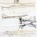 Landscape Scroll (Detail), Amanda Hislop by jonnydredge