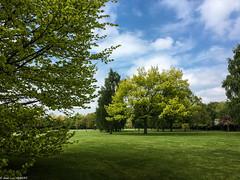 Parc de Rouelles Lr-
