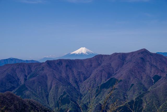石尾根越しに仰ぐ富士山@三ツドッケ