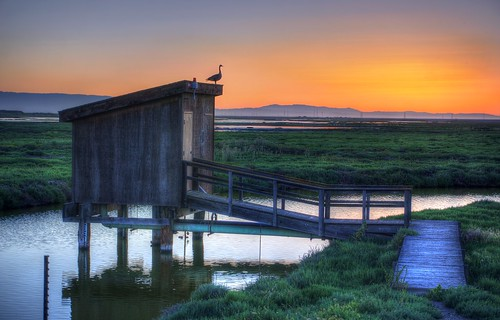 alviso california sanjose siliconvalley sanfranciscobay sanfranciscobayarea day clear dusk bay outdoor sky sunset shed silhouette bird birdsilhouette water marsh pond saltpond hut donedwardssanfranciscobaynationalwildliferefuge donedwardsnationalwildliferefuge donedwards wildliferefuge raw 3xp nex6 photomatix selp1650 hdr qualityhdr qualityhdrphotography fav200