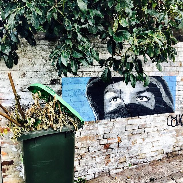 Glebe. Street art.