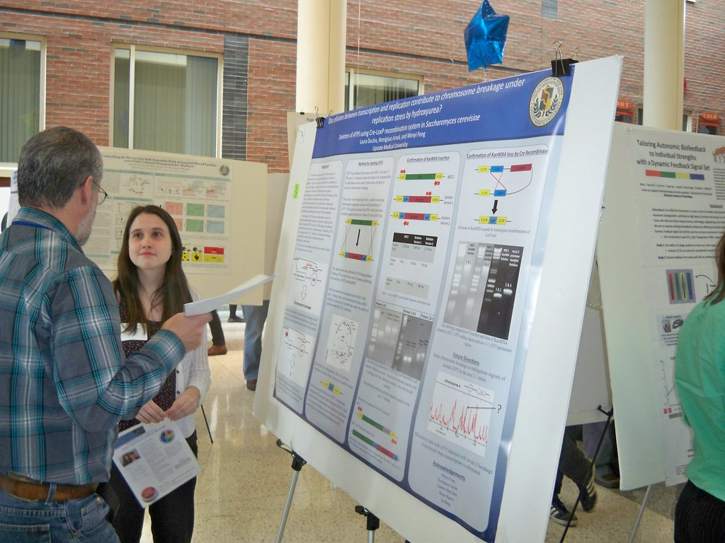 Undergraduate Research Day 2013
