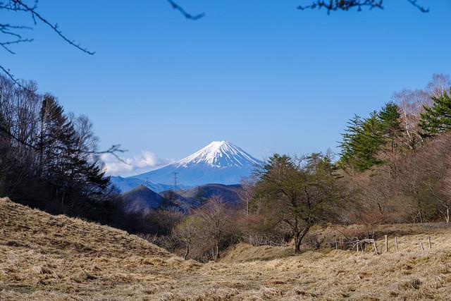 富士山@丸川峠展望ポイント