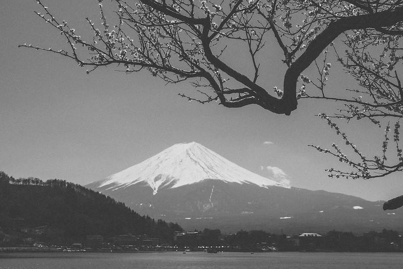 Lake Kawaguchiko 河口湖|富士山 Fujisan