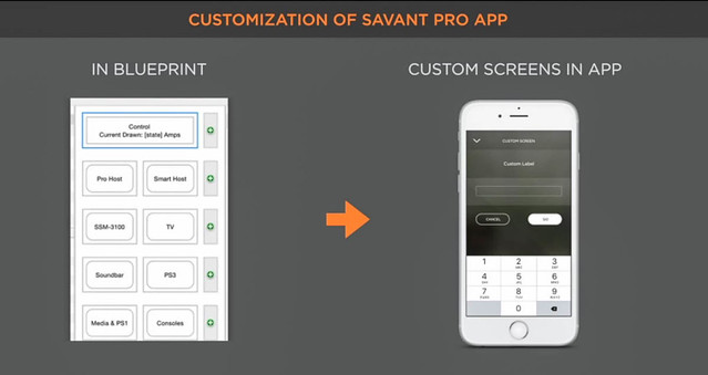 Custom page for Savant App